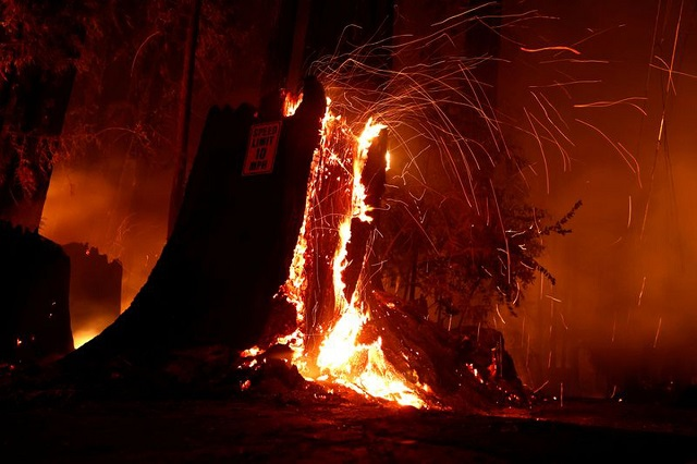 fire-gutted-cloth-godown-in-faisalabad